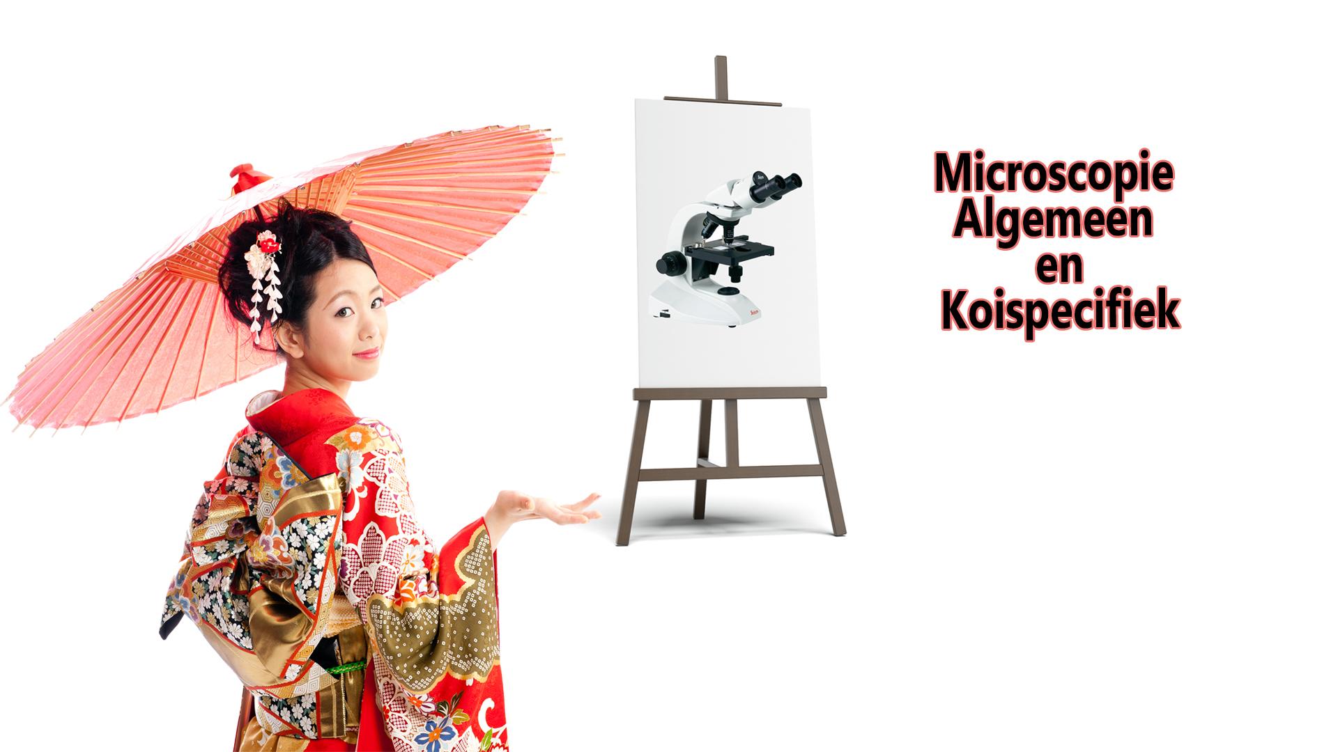 Microscopie Praktijk